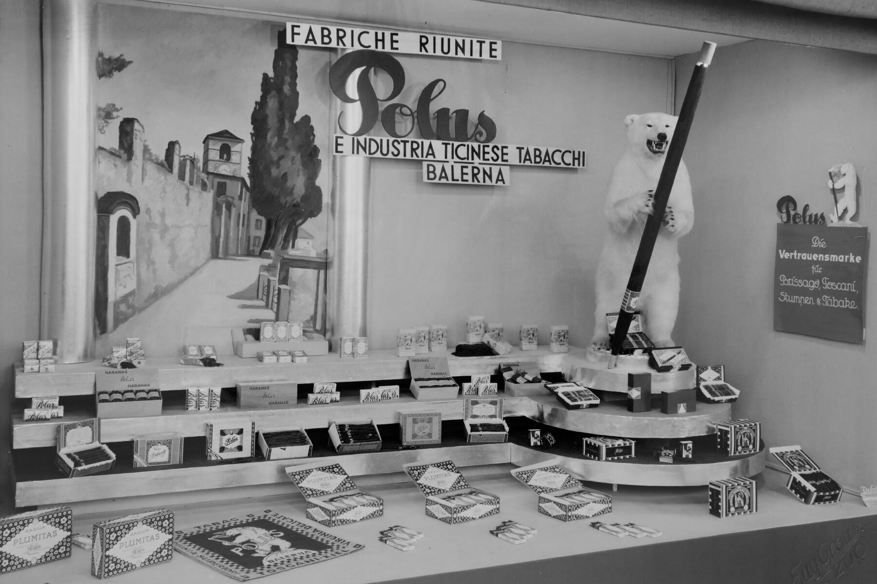 **Ampliamento edificio** In questi anni in Ticino si raggiunge l'apice delle superfici coltivate a tabacco e del numero di coltivatori. L'aumento dei quantitativi di tabacco consegnati e l'implementazione di nuove tecniche di lavorazione e produzione trovano riscontro anche nell'architettura dell'edificio della Polus che venne a più riprese ampliato.